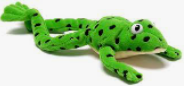 RWI Frog